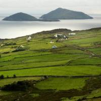 Hike through lush green landscapes on Ireland's Ring of Kerry