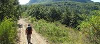 Hikers on the trail to Assisi on the St Francis Way