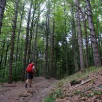 Hiking the Via Francigena between the Cisa Pass and Pontremoli