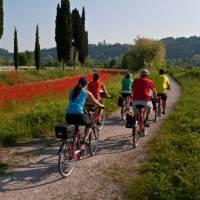 Cycling from Bolzano to Verona through the Po Delta Park