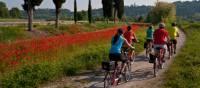 Cycling from Bolzano to Verona