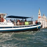 The Vita pugna in Venice