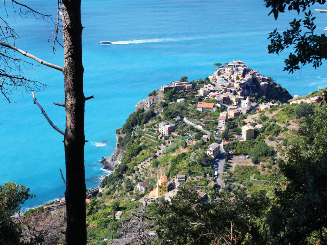 Looking down on the town of Corniglia |  <i>Philip Wyndham</i>