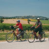Cycling in Italy is a wonderful experience for all the family   Sue Badyari