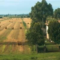 Typical farmland in the Po Delta, Veneto, Italy   Kate Baker