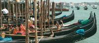 Gondolas in Venice | Rachel Imber