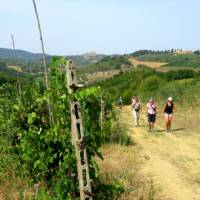 On the Via Francigena, San Gimignano in the distance