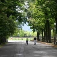 Cyclists enjoying a quiet road on the Via Francigena