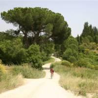 Cycling towards Rome along the Via Francigena