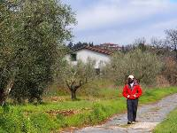 Walking along an original section of the Via Cassia near Montefiasconi |  <i>Brad Atwal</i>