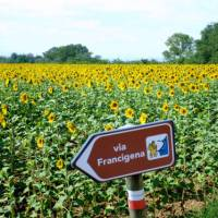 The Via Francigena is well marked for self guided travellers