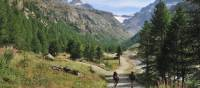 Explore the Gran Paradiso National Park on foot | Gino Cianci