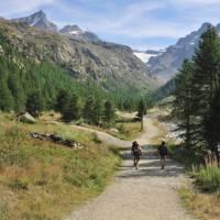 Explore the Gran Paradiso National Park on foot   Gino Cianci