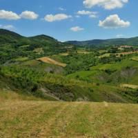 Landscapes near Pavia | Gino Cianci