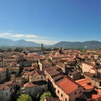 Overlooking the walled city of Lucca | Gino Cianci