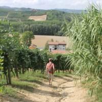 Walking towards a village in Piedmont   Jaclyn Lofts