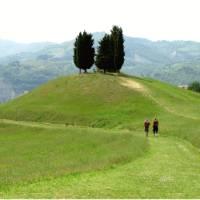 Hiking through Tuscany on the Via Francigena