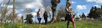 Walking in the glorious Italian weather on the Via Francigena |  <i>Allie Peden</i>