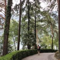 Walking alongside Lake Como   Jaclyn Lofts