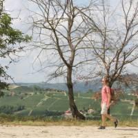Walking in Piedmont | Jaclyn Lofts