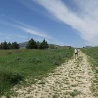 walker on the Magna Via Francigena