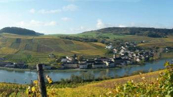 Cycle past lovely villages along the Moselle River in Luxembourg