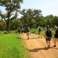 Walk the Rota Vicentina between Porto Covo and Odeceixe | John Millen