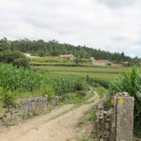 Countryside of Portugal along the Portuguese Camino tour | Jaclyn Lofts
