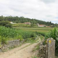 Countryside of Portugal along the Portuguese Camino tour   Jaclyn Lofts