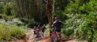 Tackling a tougher section of the trail to Santiago from Porto, Portugal | Pat Rochon