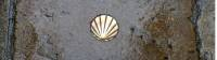 Camino shell in the pavement helps guide pilgrims |  <i>Pat Rochon</i>
