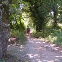 Pilgrims on the Portuguese Camino