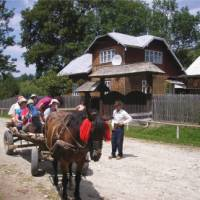 Horse and carriage transfer at Bukovina, Romania