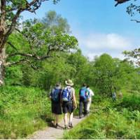 Walking to Achnacarry from Gairlochy