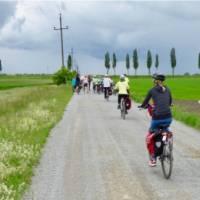 Cycling in Slovakia towards Bratislava   Pat Rochon