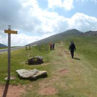 Pilgrim crossing a pass on the Camino de Santiago trail to Roncesvalles | Gesine Cheung