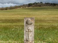 Trail marker on the Camino Frances in the Pyrenees |  <i>Gesine Cheung</i>