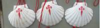The scallop shell can be found all along the Camino |  <i>Gesine Cheung</i>