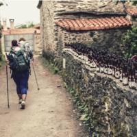 Pilgrims hiking through small village on the Camino   @timcharody