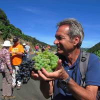 Andreas Holland, Food Lover's Spanish Camino escort, walking with group in Galicia Spain |  <i>Andreas Holland</i>
