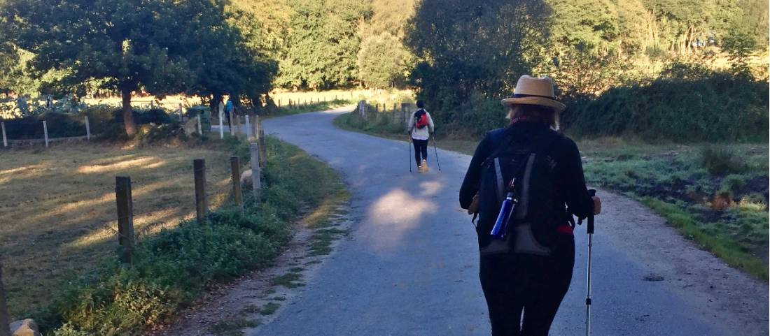 Pilgrims walking the Camino in Spain |  <i>Sue Finn</i>