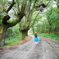 Peaceful walking makes for a meditative experience along the Camino Sanabres