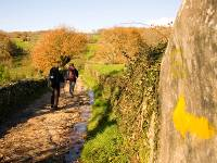 Walking along the Camino