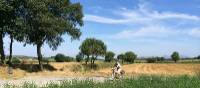 Cycling in the  Baix Empordà region of Catalonia | Kate Baker