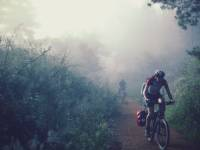 Cycling through the morning mist along the Camino |  <i>@timcharody</i>