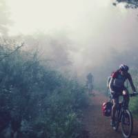 Cycling through the morning mist along the Camino | @timcharody