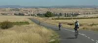 Cyclists in Rioja