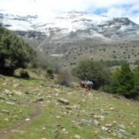 Group walking in the Alpujarras | Erin Williams