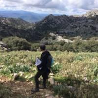 Walk through wild countryside in Andalucia near Ronda   Allie Peden