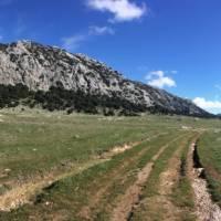 Landscapes near Grazalema | Allie Peden